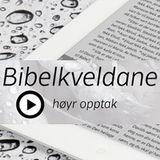 Bibekveldar i Brynekyrkja - Høyr undervisninga